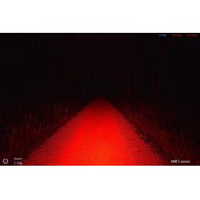 Lupine Rotlicht Sicherheitslampe blau